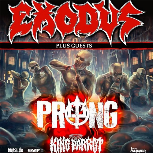 Exodus Prong King Parrot
